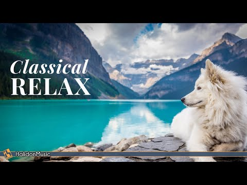 Classical Music for Relaxation: Chopin, Beethoven, Liszt…