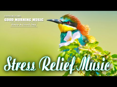 Classical Music For Relaxation 🌿 Peaceful Piano, Happy And Positive Energy, Meditation Music