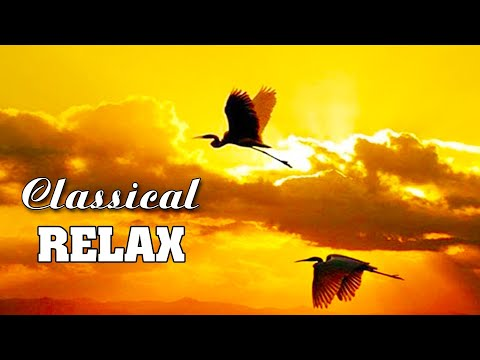 Classical music for studying 🌿 Classical piano music 🌿 Calming music for stress relief, sleep music