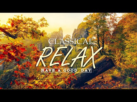 Classical music for studying 🌿 Music for studying, reading music classical, music for reading lofi