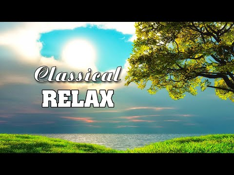Classical music for studying, Piano music study 🌿 Classical music for sleeping calm control anxiety