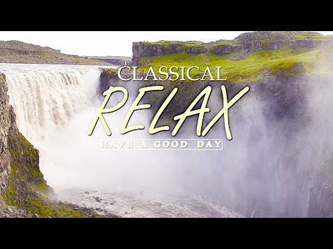 Classical music for studying 🌿Reading music for studying, classical music for relaxation, lofi study