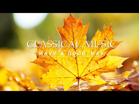 Classical music for studying 🌿 Reading music, relaxing classical music, music for reading classical