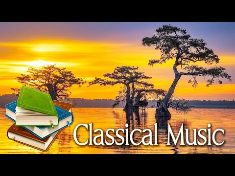 Classical music for studying 🌿Sunday morning classical piano music 🌿 Classical for studying, reading