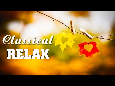 Classical music playlist, study music classical 🌿 Classical music relaxing, music for studying