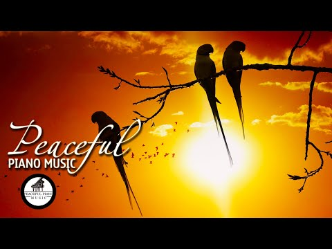 Peaceful Piano Music 247 Classical Music – Meditation Music – Study Music – Stress Relief Music